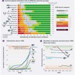 Eko-llaps och IPBES| ASHES ASHES