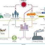 COVID-19 påverkan på olika system på Jorden